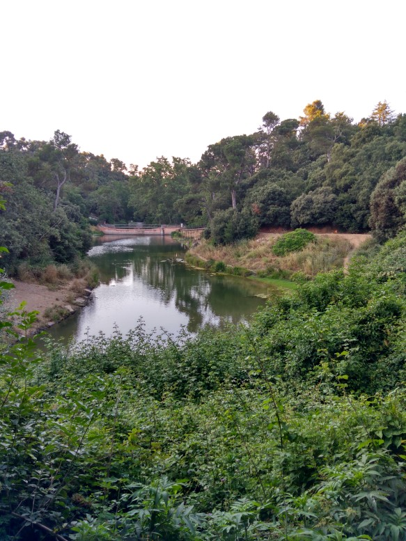 Pantà de Vallvidrera, aprox. km 14